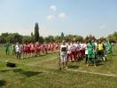 Temerin (Vajdaság) - Illés-nap 2015.07.18.